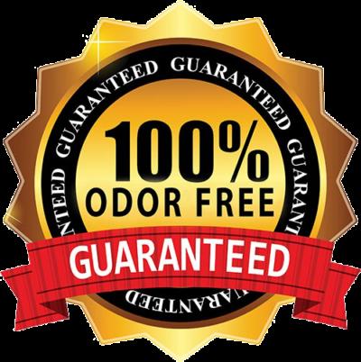 odor removal service